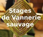 Stages de vannerie sauvage