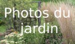 Photos du jardin